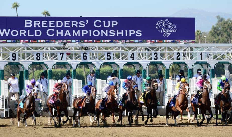 3 en 4 november wordt de Breeders cup gehouden, een van de grootste paardenraces van het seizoen met een hoofdprijs van $5.000.000. Lees er hier meer over!