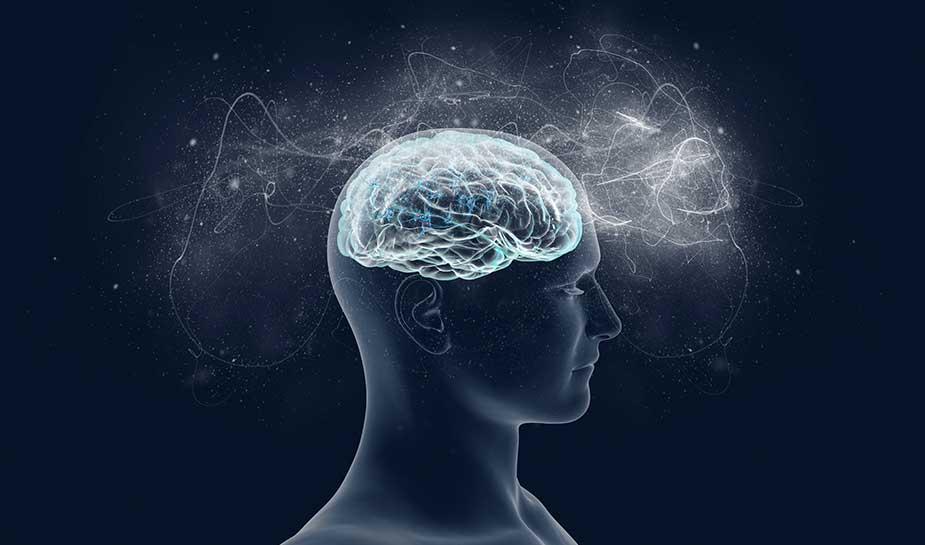 dopamine and serotonin interacting during gambling